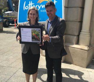 Lotterywest Grant to help deliver a bigger and better Fremantle Festival