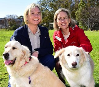 Over $1 million funding allocated to support animal welfare in Western Australia